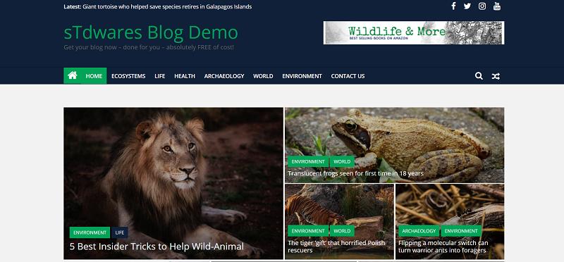 sTdwares Freelancing Venture - DEMO Free Blog Design